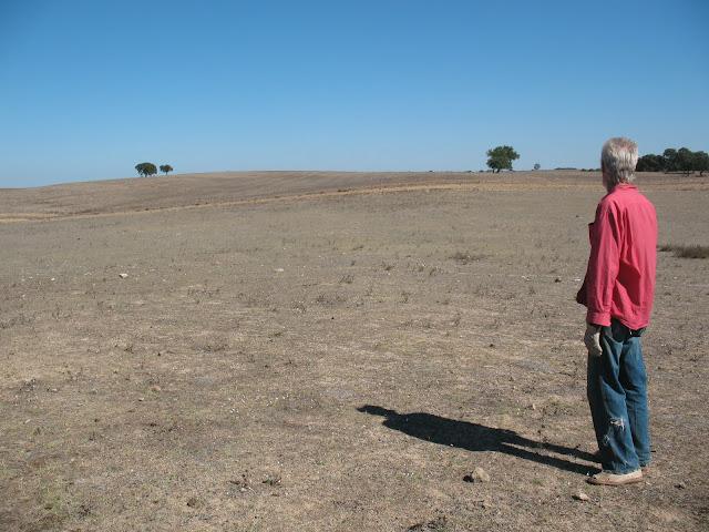 Agricultura Regenerativa Vs Agricultura Extractiva