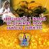 Vereadora Edylene Ferreira faz publicação #tbt relembrando o bloco 'Amigos da Galega'