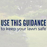 Garden Theft Is on the Rise: Use This Guidance to Keep Your Lawn Safe