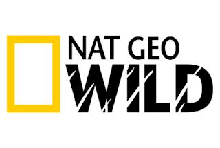 Nat Wild