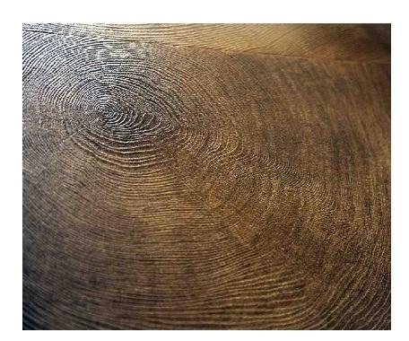 Tile Musings Wood Grain Porcelain Tiles The Perfect