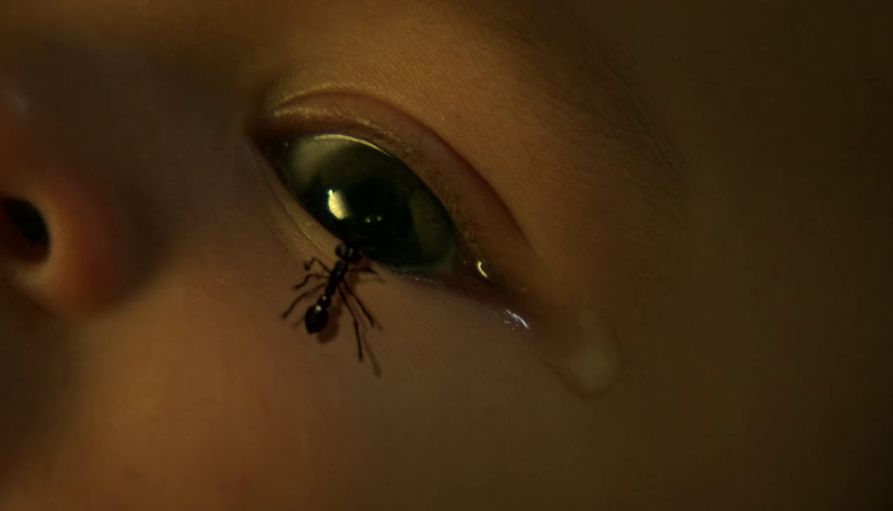 The Hive (2008) Movie Screenshot