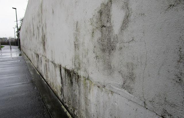 muuri, kosteusvaurio