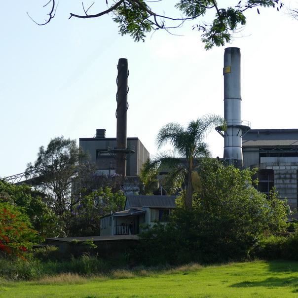 Bundaberg Distillery Rum Fabrik grün bewachsen