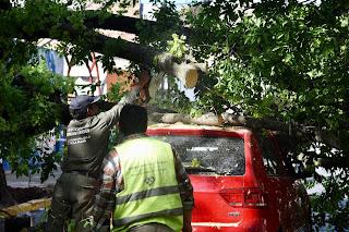 Intenso operativo de asistencia tras la tormenta que afectó a la región