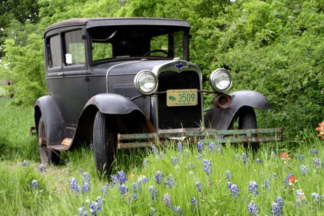 Day Trippin Ennis Bluebonnet Trail Sugar Ridge Winery TX