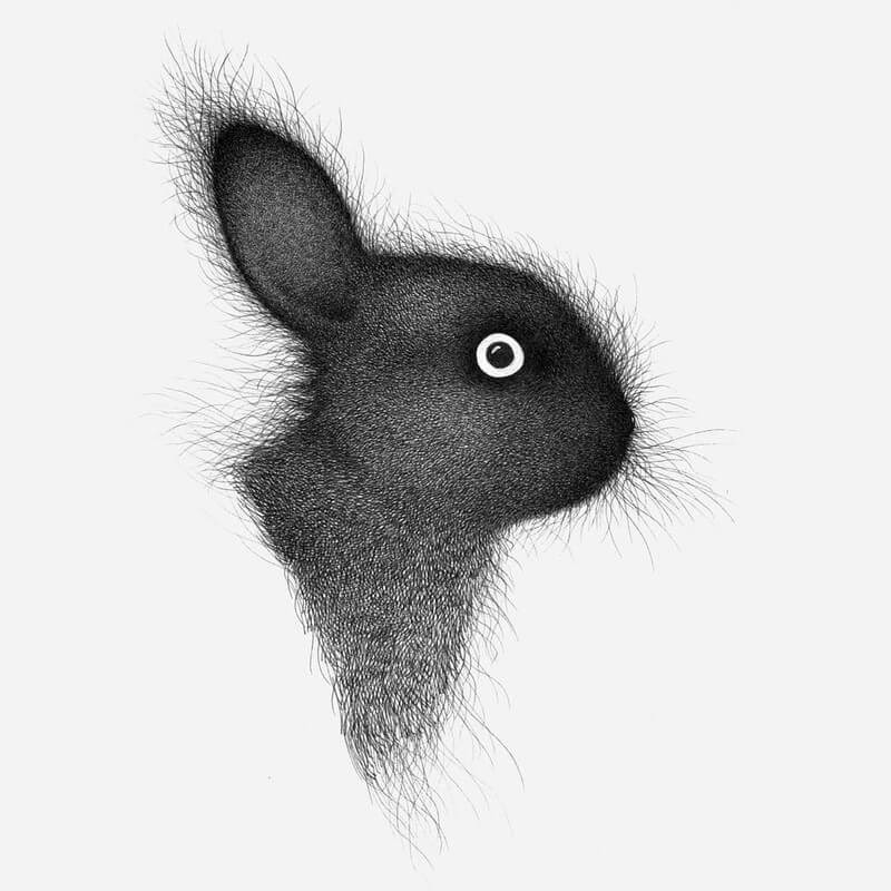 03-Luis-Coelho-Ink-Animal-Drawings-Cats-and-More-www-designstack-co