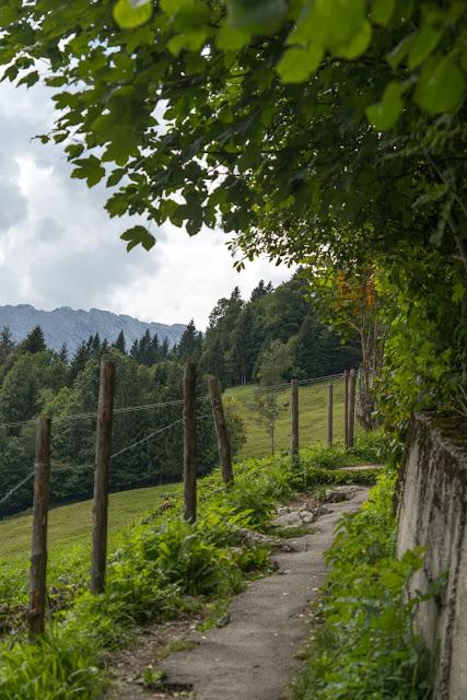 Entdeckungstour Wasser Partnach - Wetterstein Route | Wandern Garmisch-Partenkirchen 09