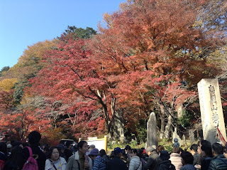 Mount Takao autumn