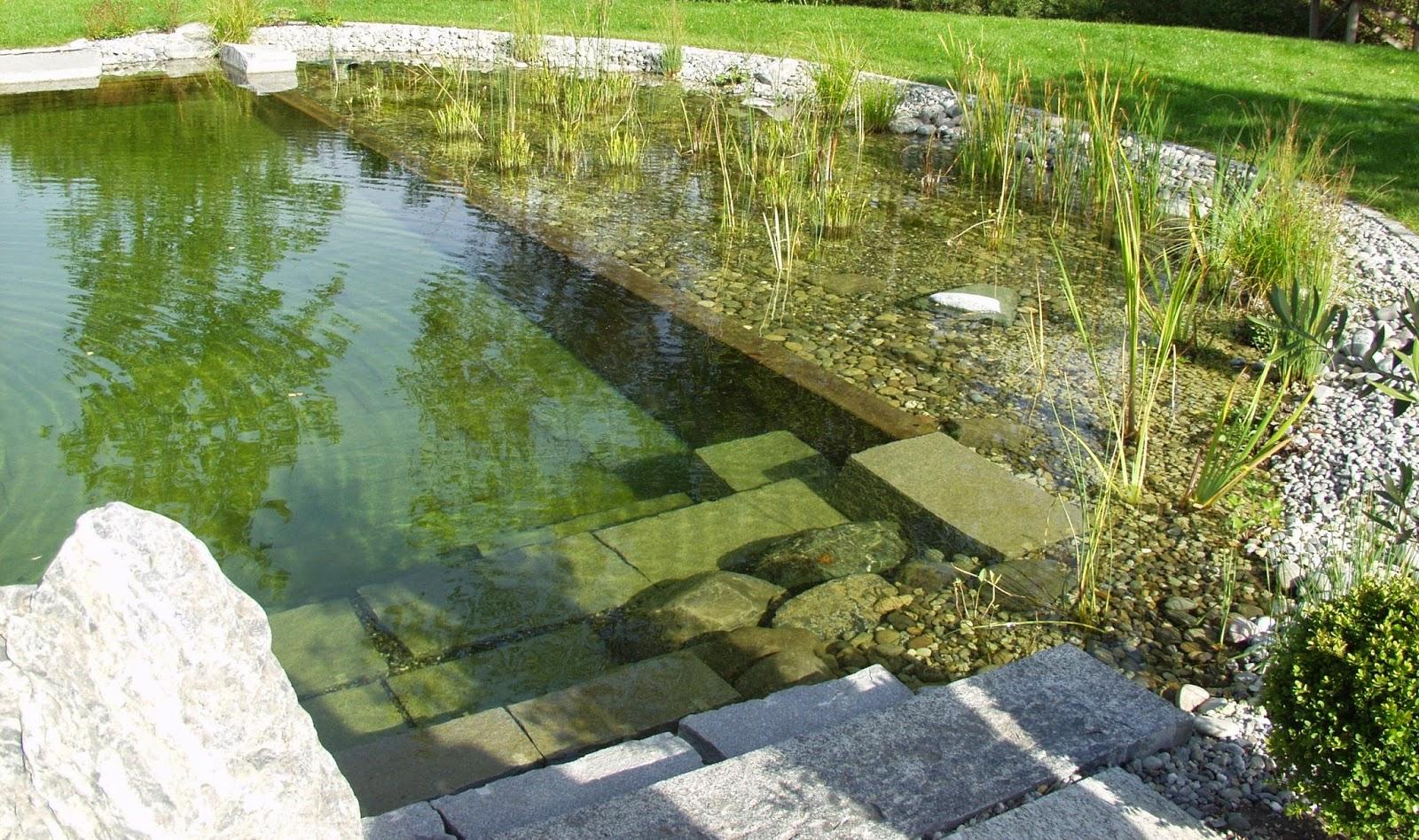 Te invito a leer piscinas naturales for Albercas naturales