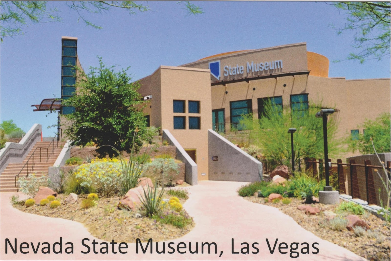 one postcard a day nevada state museum las vegas. Black Bedroom Furniture Sets. Home Design Ideas