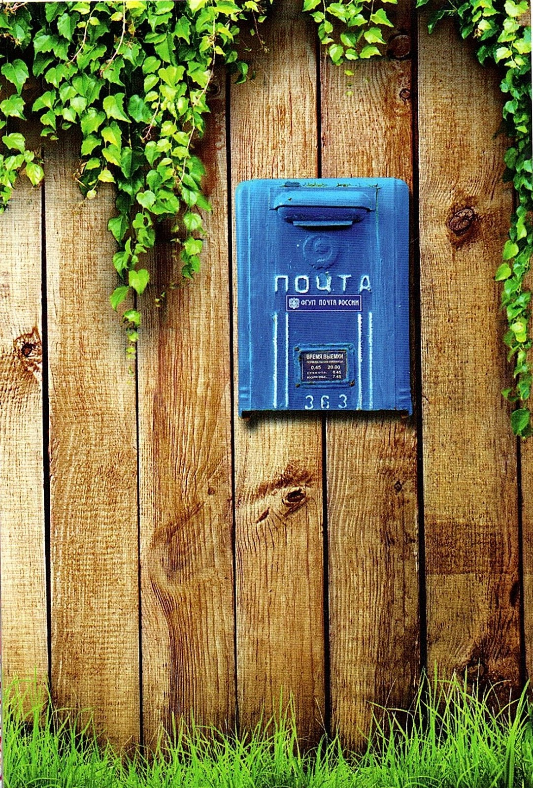 Женщине лет, отправить открытку с почтового ящика