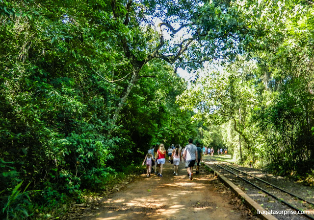 Trilha no Parque Nacional del Iguazú, lado argentino das cataratas