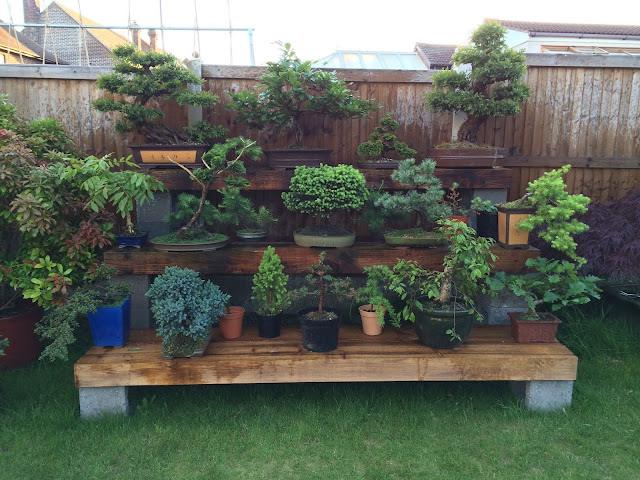 How to Use a Bonsai Stand/Table Outdoors