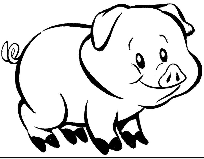 Desenhos De Animais Para Colorir: Desenhos De Animais Para Pintar