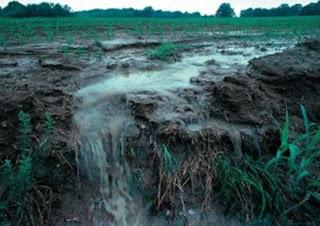 aliran air yang membawa mineral kedalam air
