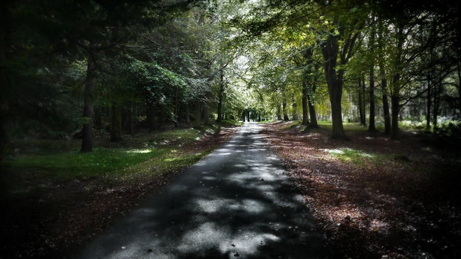 Crawford Priory Driveway