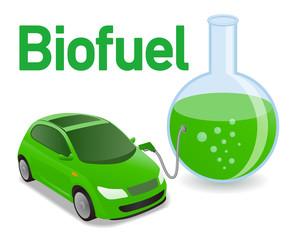 Biogas car  fuel