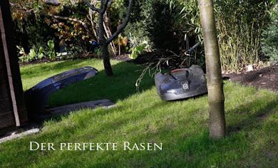 gartenblog geniesser garten perfekter rasen. Black Bedroom Furniture Sets. Home Design Ideas