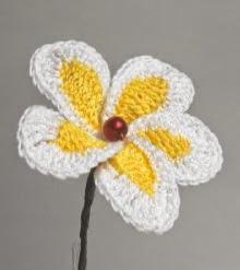 http://www.fiori-uncinetto.com/libro-book/inglese/
