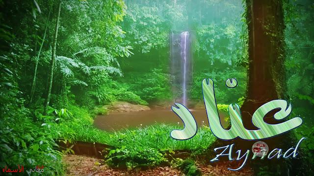 معنى إسم عناد وصفات حاملة هذا الإسم Aynad