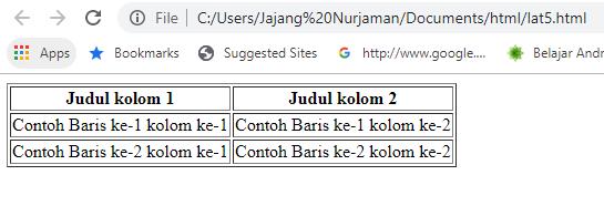 table border html