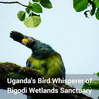 Uganda's Bird Whisperer of Bigodi Wetlands Sanctuary