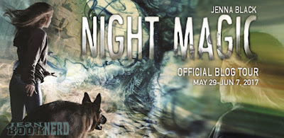 http://www.jeanbooknerd.com/2017/03/night-magic-by-jenna-black.html