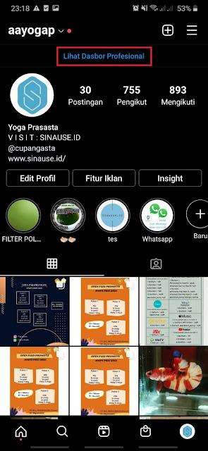 Cara Melihat Insight Instagram 1
