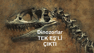 Tekeş'li Dinozor
