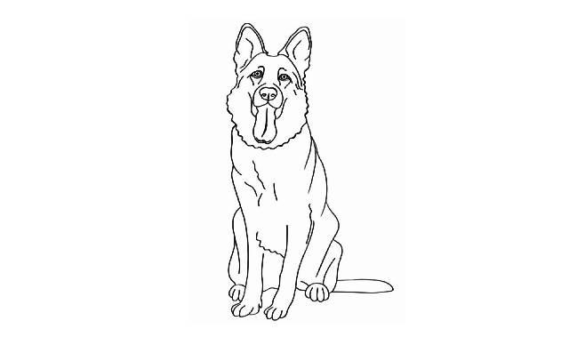 dibujos faciles de perros pastor aleman