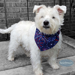 Patriotic Fireworks and Stars Patriotic Dog Bandana