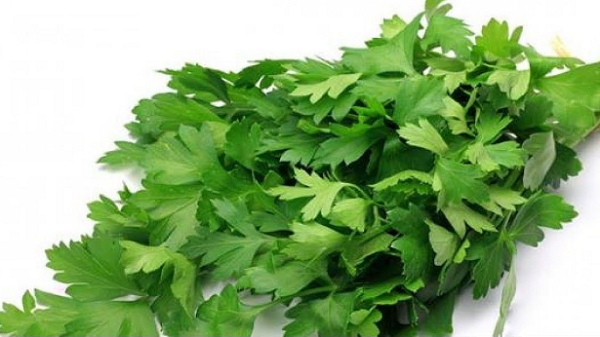 What are the benefits of boiled parsley for the body