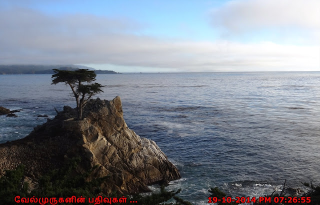 Cypress Point lookout 17 Mile Scenic Drive