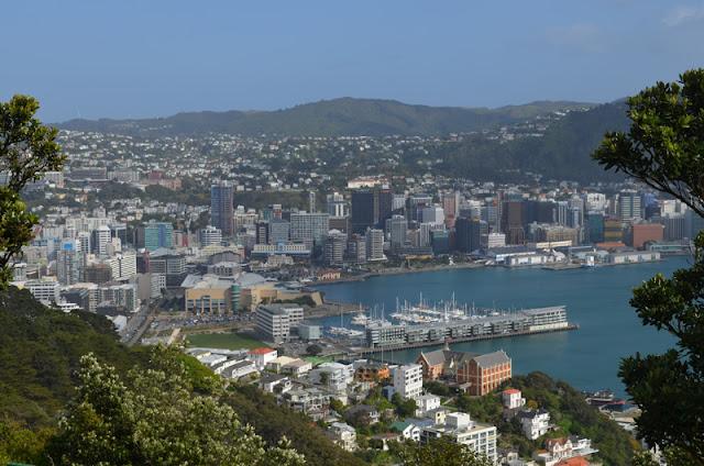 Dia 11: Voltant per Wellington i buscant el famòs amagatall dels Hobbits!