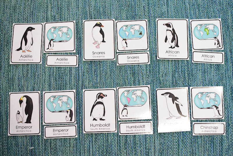 Penguins Preschool Math and Literacy Mini Unit