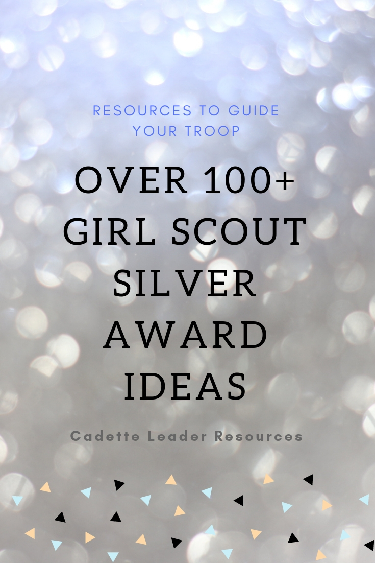 Official SILVER Award for Cadette Girl Scouts NEW in BOX Combine Hard to Find