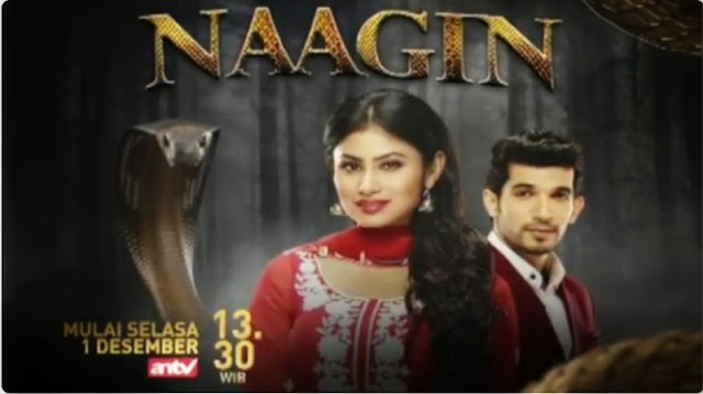 Sinopsis Naagin 2 ANTV Minggu 17 Januari 2021 - Episode 48