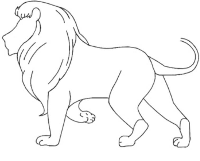 Menggambar sketsa singa cartoon | INFOZANI