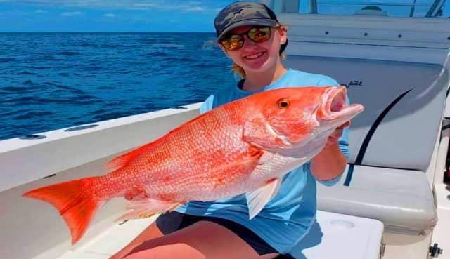 Ikan Kakap Merah