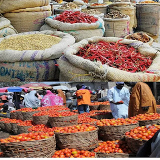 Market: Today Price of Onion Bag, Tomatoes Basket, Peppers Basket, Beans Bag and Others Vegetables