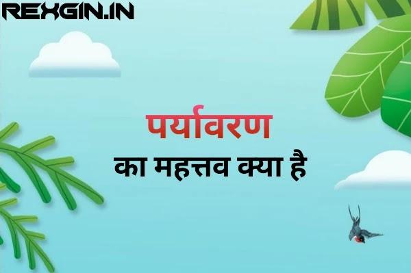 पर्यावरण का महत्व - environment in Hindi