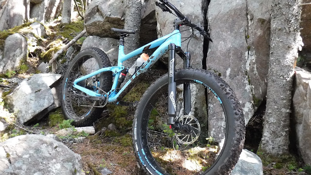 Vee Crown Gem 27.5 x 3.8 wren trek farley 9.8