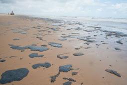 Óleo em praias do nordeste tem características venezuelanas, diz Petrobras