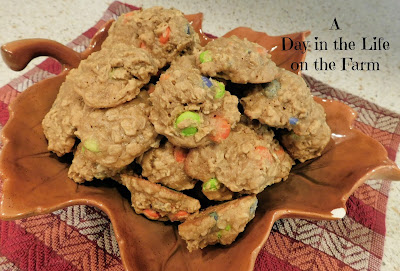 Honey Oatmeal Halloween Cookies