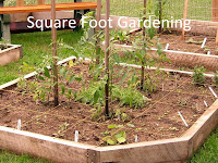Square Foot Garden Diagram