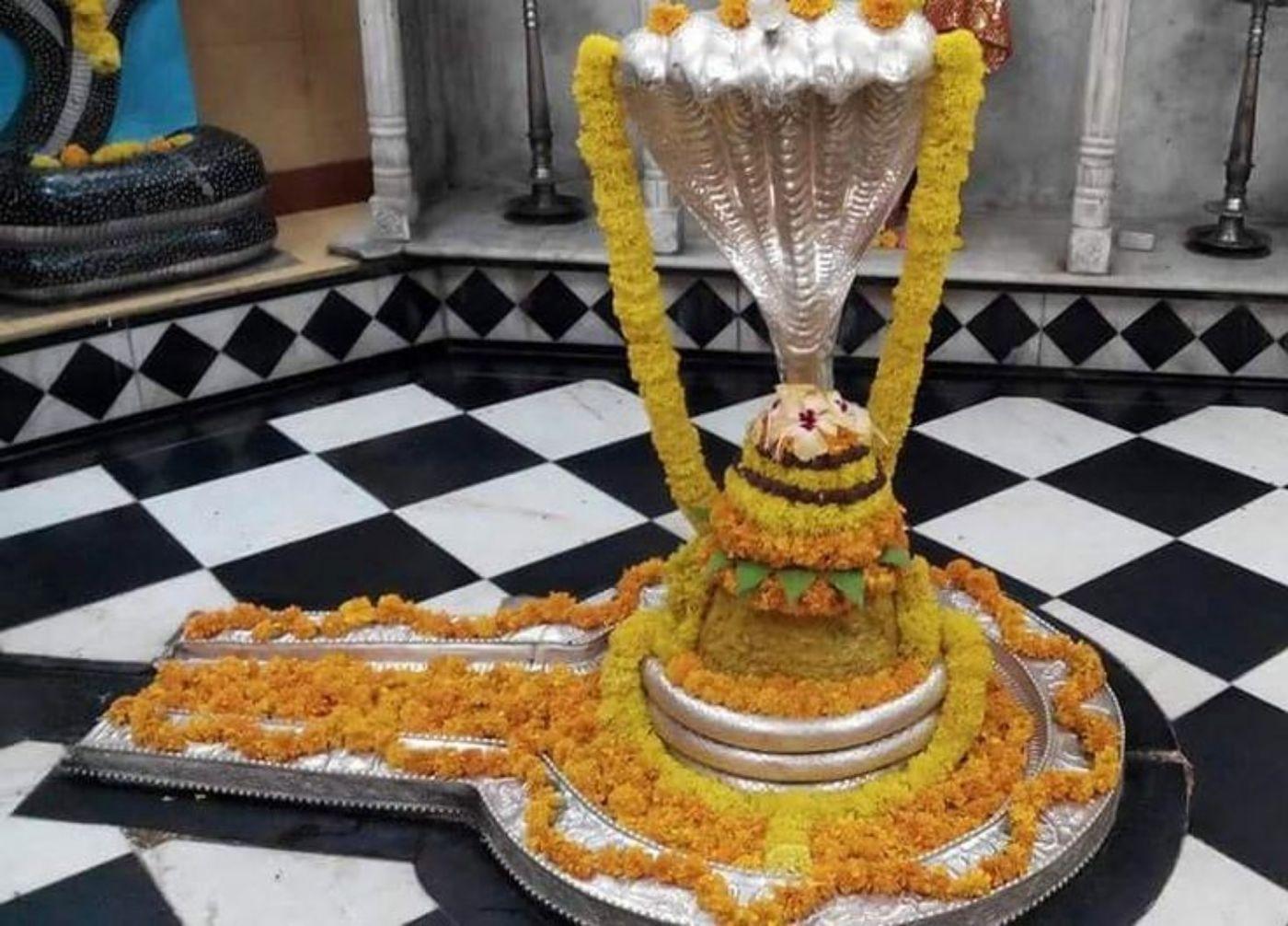 Nageshwar Jyotirlinga shivling image