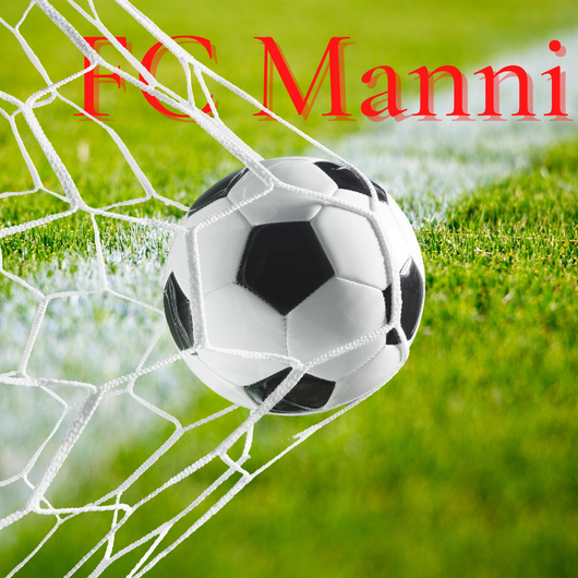 Houston Soccer Club, FC Manni Signs Chibuike Aguguo, Blake Collins, Raul Calix, Benjamin Nyatome