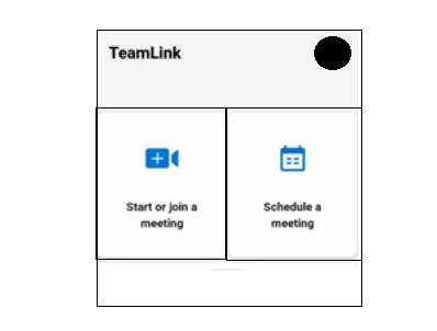 cara menggunakan teamlink