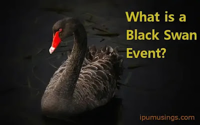 What is a Black Swan Event? (#Finance)(#ipumusings)(#bba)(#mba)
